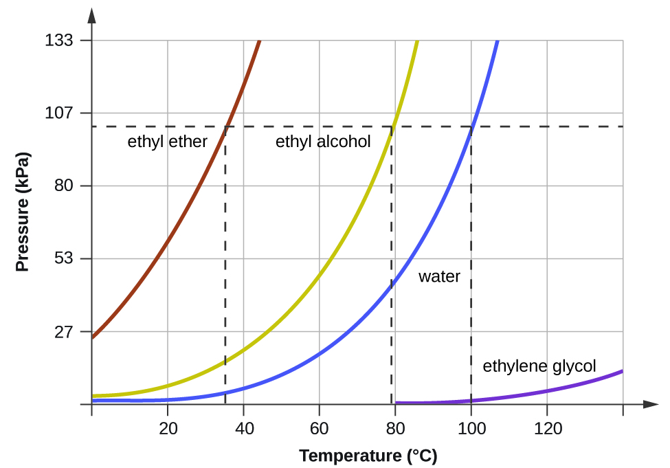 """A graph is shown where the x-axis is labeled """"Temperature ( degree sign, C )"""" and has values of 200 to 1000 in increments of 200 and the y-axis is labeled """"Pressure ( k P a )"""" and has values of 20 to 120 in increments of 20. A horizontal dotted line extends across the graph at point 780 on the y-axis while three vertical dotted lines extend from points 35, 78, and 100 to meet the horizontal dotted line. Four lines are graphed. The first line, labeled """"ethyl ether,"""" begins at the point """"0 , 200"""" and extends in a slight curve to point """"45, 1000"""" while the second line, labeled """"ethanol"""", extends from point """"0, 20"""" to point """"88, 1000"""" in a more extreme curve. The third line, labeled """"water,"""" begins at the point """"0, 0"""" and extends in a curve to point """"108, 1000"""" while the fourth line, labeled """"ethylene glycol,"""" extends from point """"80, 0"""" to point """"140, 100"""" in a very shallow curve."""