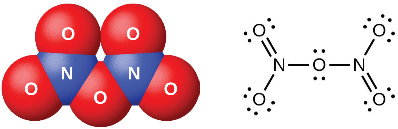 "A space-filling model and a Lewis structure are shown. The space-filling model shows two blue atoms labeled, ""N,"" each bonded to two red atoms labeled, ""O,"" with another red atom labeled, ""O,"" in between them. The Lewis structure shows a nitrogen atom single bonded to an oxygen atom with three lone pairs of electrons in a downward position and double bonded to an oxygen atom with two lone pairs of electrons in an upward position. This nitrogen is single bonded to an oxygen atom with two lone pairs of electrons. The oxygen atom is single bonded to another nitrogen atom which is single bonded to another oxygen atom with three lone pairs of electrons in an upward position. The second nitrogen atom is also double bonded to an oxygen atom with two lone pairs of electrons in a downward position."