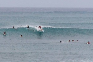 Photo of surfers in the ocean