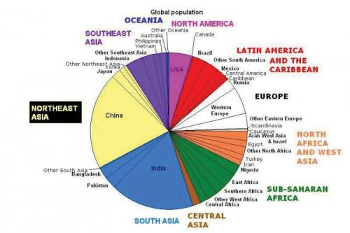 Pie chart representing world populations. Extremely detailed, difficult to read.