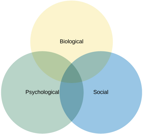 Domains in Psychology | Introduction to Psychology