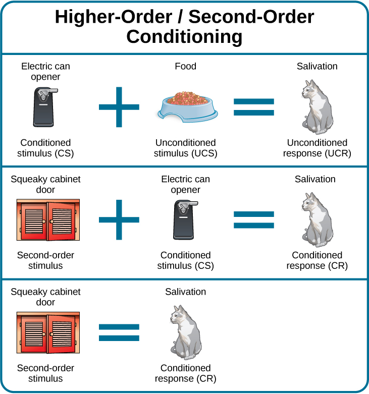 Classical Conditioning Introduction To Psychology