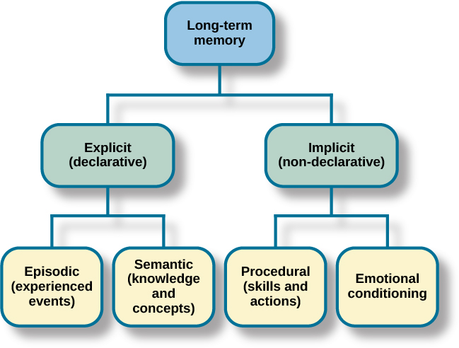 "A diagram consists of three rows of boxes. The box in the top row is labeled ""long-term memory""; a line from the box separates into two lines leading to two boxes on the second row, labeled ""explicit (declarative)"" and ""implicit (non-declarative)."" From each of the second row boxes, lines split and lead to two additional boxes. From the ""explicit"" box are two boxes labeled ""episodic (experienced events)"" and ""semantic (knowledge and concepts)."" From the ""implicit"" box are two boxes labeled ""procedural (skills and actions)"" and ""emotional conditioning."""