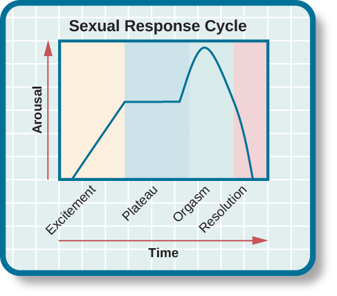Psychosexual behavior
