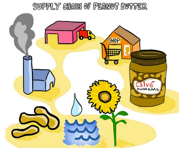 Supply Chain of Peanut Butter. Illustration shows a flower and a pool of water which leads to peanuts, which leads to a a farm with a smokestack, which leads to a warehouse, which leads to a grocery store, which leads to and a jar of peanut butter.