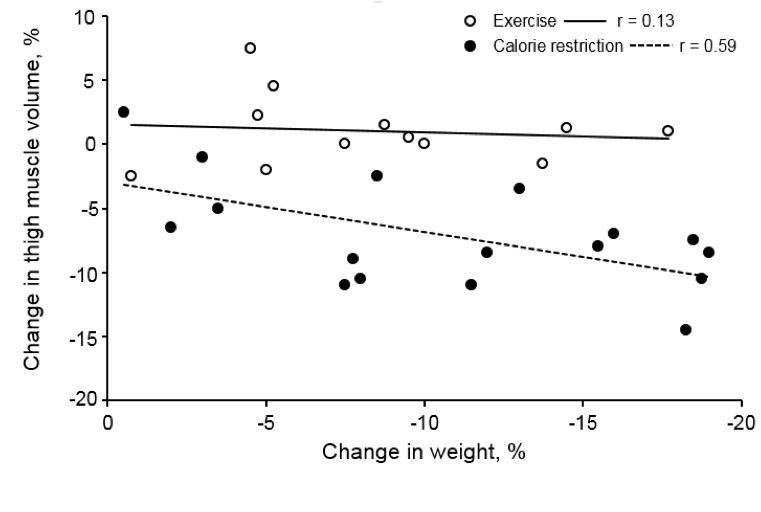 A scatter plot graph, with the y axis measuring the change in thigh muscle volume in percent, and the X axis measuring change in weight in percent. Open points represent the exercise group, and closed points represent the calorie restriction group. A solid line that slopes slightly downward is drawn through the midst of the open points representing the exercise group. The exercise group line is labeled r equals 0.13. A dotted line that slopes slightly downward runs through the midst of the closed dots representing the calorie restriction group. The dotted line is labeled r equals 0.59.