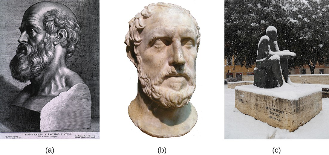 Figurea is a drawing of a bust of Hippocrates. Figureb is a photo of a sculpture of Thucydides's head. Figurec is a photo of a sculpture of Marcus Terentius Varro.