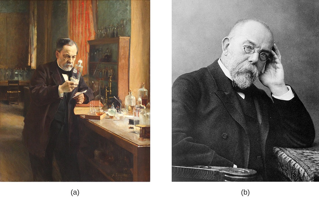 Figurea is a drawing of Louis Pasteur in his lab. Figureb is a photograph of Robert Koch.