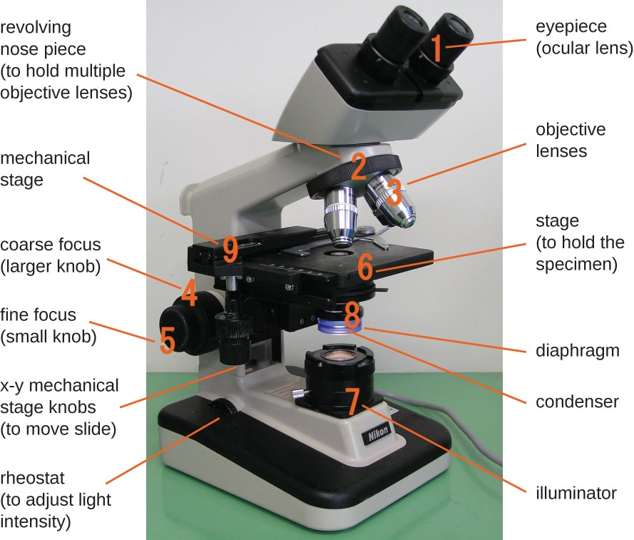 Instruments Of Microscopy Microbiology