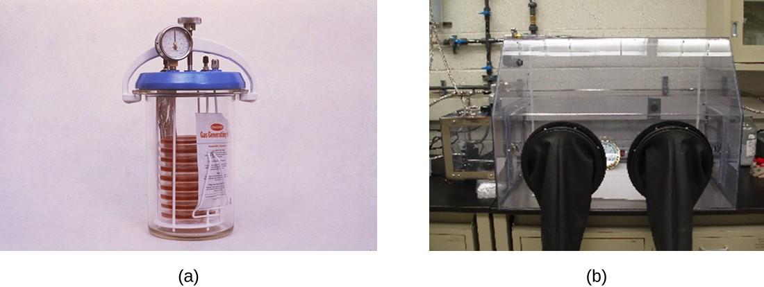 a) A photo of a stack of agar plates in a chamber. B) A photo of a chamber with sleeves for arms.