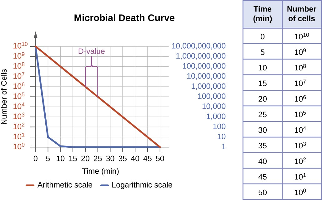 A table showing a decrease in number as microbial cells die. At time 0 there are 10 to the 10 cells. At time 5 there are 10 to the 9 cells. At time 10 there are 10 to the 8 cells. At time 15there are 10 to the 7 cells. At time 20 there are 10 to the 6 cells. At time 25 there are 10 to the 5 cells. At time 30 there are 10 to the 4 cells. At time 35 there are 10 to the 3 cells. At time 40 there are 10 to the 2 cells. At time 45 there are 10 to the 1 cells. At time 50 there are 10 to the 0 cells. A graph titled microbial death curve. The X axis is time and the Y axis is number of cells. Two lines indicate what this graph looks like using an arithmetic and logarithmic scale. Both lines begin at 10 to the 10 at time 0. The arithmetic scale drops quickly and is indistinguishable from 0 by 10 minutes. The logarithmic scale slopes at a clean diagonal. The D value is shown as the time it takes to move from 10 to the 6 to 10 to the 5; this occurs in 5 minutes.