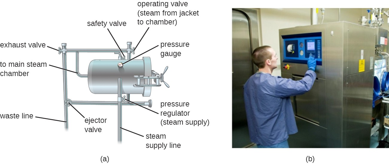 a) A drawing of an autoclave. There is a large metal cylinder with a pressure gauge. An operative valve allows steam from the jacket to the chamber; there is also a safety valve. The main chamber connects to an exhaust valve, a waste line, an ejector valve, a steam supply line and a pressure regulator. B) a photo of an autoclave; a large metal box as tall as the operator standing in front of it.