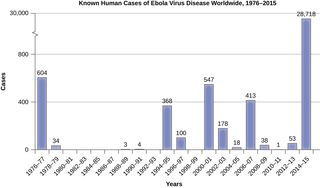 Graph of Known human cases of Ebola virus diseases worldwide from 1976 – 2015. There were 604 in 1976-77. There were 44 in 1978-79. There were 0 from 1980 – 87. There were 3 in 1988-89. There were 4 in 1990-91. There were 368 in 1994-95. There were 100 in 1996-97. There were 0 in 1998-99. There were 547 in 2000-2001. There were 178 in 2002-2003. There were 18 in 2004-2005. There were 413 in 2006-2007. There were 38 in 2006-2007. There were 38 in 2008-2009. There was 1 in 2010-2011. There were 53 in 2012-2013. There were 28,718 in 2014-2015.