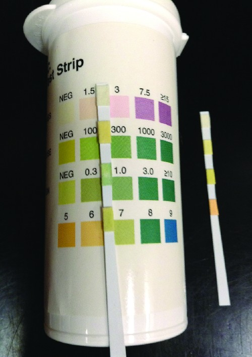 A thin strip with 4 colored regions. Each region matches a set of colors on a container. Each different color indicates a different measurement for a particular test.