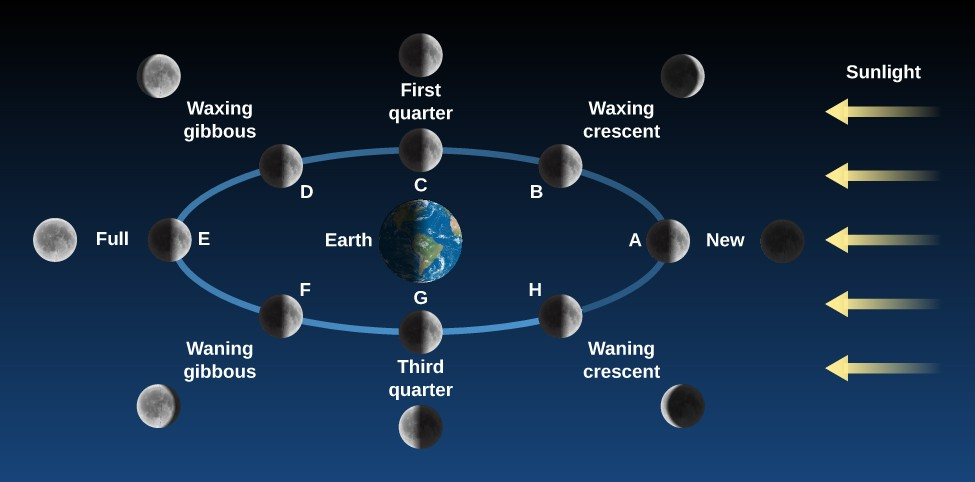 Phases of the Moon. The Earth is drawn as the center of a blue ellipse representing the Moon's orbit. At right, yellow arrows labeled