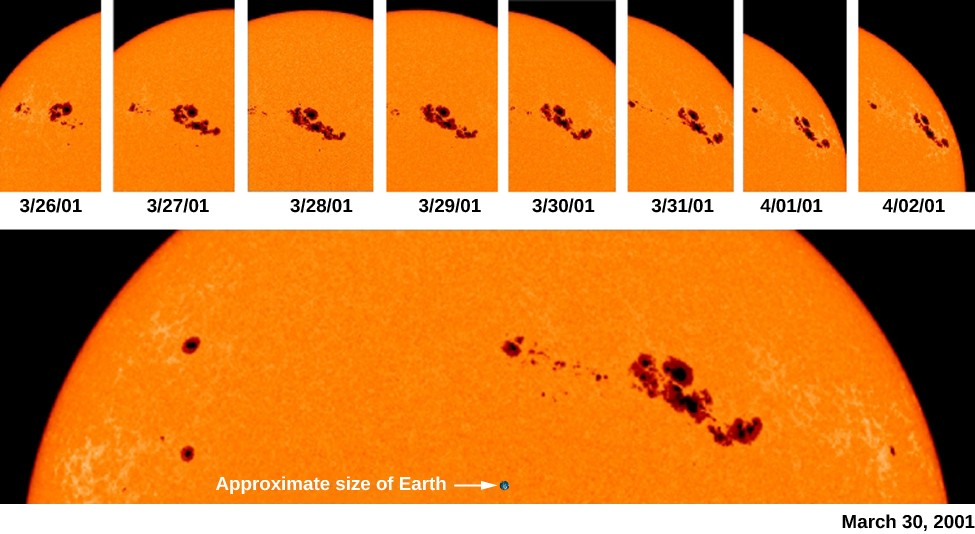 An image of the rotation of sunspots across the sun's surface. A series of images at the top shows the movement of sunspots over time. A enlarged view of the top portion of the sun is shown at bottom, with a black dot labeled