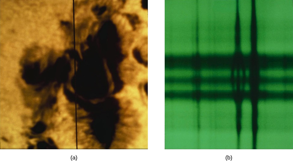 A figure illustrating the Zeeman Effect. On the left is a photograph of a sunspot, and on the right is a spectrograph.