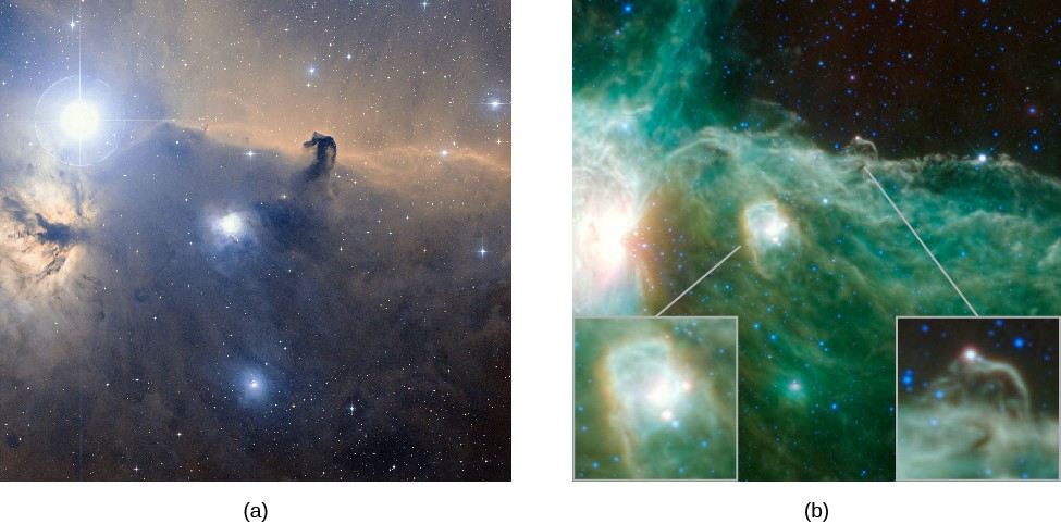 Visible and Infrared Images of the Horsehead Nebula in Orion. At left, (a) is a visible light image of the