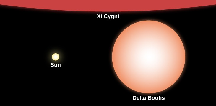Relative Sizes of Stars Compared to the Sun. In this illustration the Sun is represented at center-left with a yellow disk labeled