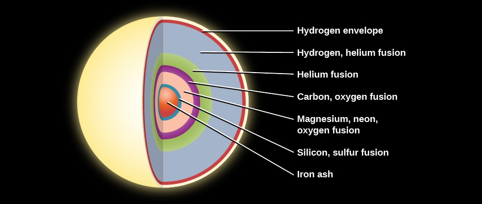 Interior Structure of a Massive Star before the End of its Life. The onion like layers of a massive star are illustrated as follows: the outermost layer is composed of hydrogen, followed by another hydrogen layer, a helium layer, an oxygen layer, a neon layer, a magnesium layer, a silicon layer, and culminating in a core of iron