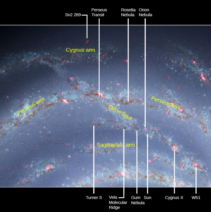 The Sun and the Orion Spur. Portions of three spiral arms of the Milky Way are shown in this illustration. The