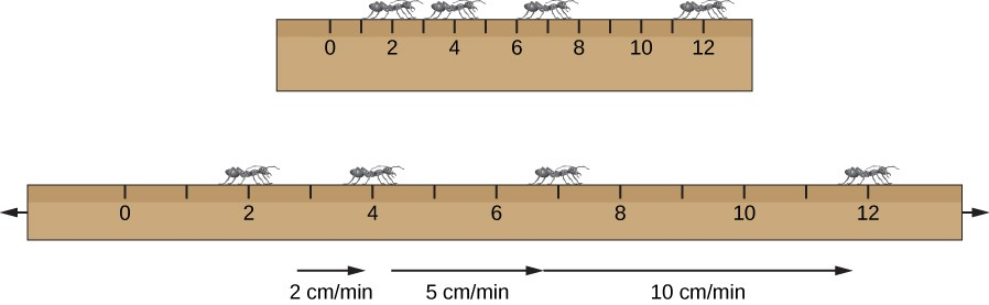 Stretching a Ruler. In this illustration, the ruler at top is normal sized, and has ants drawn at 2, 4, 7 and 12 cm. The same ruler is drawn below, but stretched to twice its length. The ants are still at their positions as above, but the ant at 2 cm sees the ant at 4 cm move away at 2 cm/min, the ant at 7 cm move away at 5 cm/min and the ant at 12 cm move away at 10 cm/min.