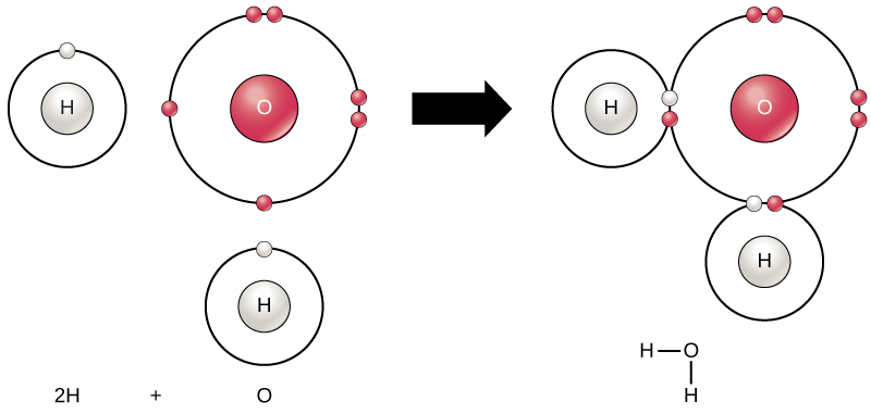 Chemical Reactions And Molecules Biology For Majors I