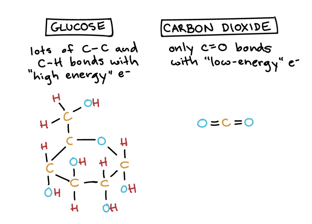 "Image of glucose, which has lots of C-C and C-H bonds with ""high-energy"" electrons, and carbon dioxide, which has only C-O bonds with ""low-energy"" electrons."