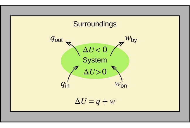 """A rectangular diagram is shown. A green oval lies in the center of a tan field inside of a gray box. The tan field is labeled """"Surroundings"""" and the equation """"Δ U = q + w"""" is written at the bottom of the diagram. Two arrows face into the green oval and are labeled """"q subscript in"""" and """"w subscript on"""" while two more arrows face away from the oval and are labeled """"q subscript out"""" and """"w subscript by."""" The center of the oval contains the terms """"Δ U < 0"""", """"System,"""" and """"Δ U > 0."""""""
