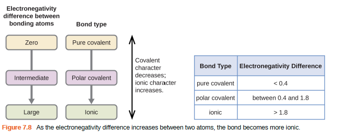 "Two flow charts and table are shown. The first flow chart is labeled, ""Electronegativity difference between bonding atoms."" Below this label are three rounded text bubbles, connected by a downward-facing arrow, labeled, ""Zero,"" ""Intermediate,"" and ""Large,"" respectively. The second flow chart is labeled, ""Bond type."" Below this label are three rounded text bubbles, connected by a downward-facing arrow, labeled, ""Pure covalent,"" ""Polar covalent,"" and ""Ionic,"" respectively. A double ended arrow is written vertically to the right of the flow charts and labeled, ""Covalent character decreases; ionic character increases."" The table is made up of two columns and four rows. The header line is labeled ""Bond type"" and ""Electronegativity difference."" The left column contains the phrases ""Pure covalent,"" ""Polar covalent,"" and ""Ionic,"" while the right column contains the values ""less than 0.4,"" ""between 0.4 and 1.8,"" and ""greater than 1.8."""