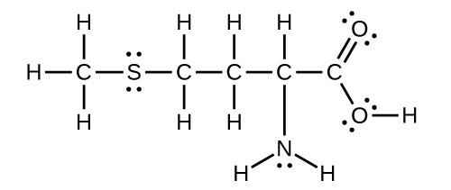 Sulfur Orbital Diagram