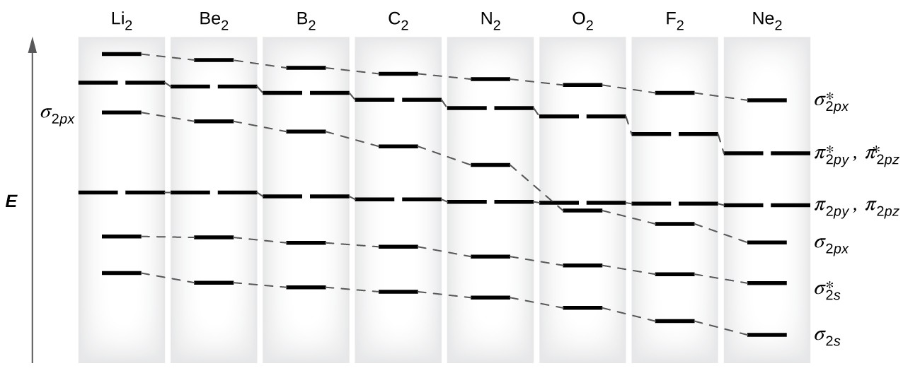 """A graph is shown in which the y-axis is labeled, """"E,"""" and appears as a vertical, upward-facing arrow. Across the top, the graph reads, """"L i subscript 2,"""" """"B e subscript 2,"""" """"B subscript 2,"""" """"C subscript 2,"""" """"N subscript 2,"""" """"O subscript 2,"""" """"F subscript 2,"""" and """"Ne subscript 2."""" Directly below each of these element terms is a single pink line, and all lines are connected to one another by a dashed line, to create an overall line that decreases in height as it moves from left to right across the graph. This line is labeled, """"sigma subscript 2 p x superscript asterisk"""". Directly below each of these lines is a set of two pink lines, and all lines are connected to one another by a dashed line, to create an overall line that decreases in height as it moves from left to right across the graph. It is consistently lower than the first line. This line is labeled, """"pi subscript 2 p y superscript asterisk,"""" and, """"pi subscript 2 p z superscript asterisk."""" Directly below each of these double lines is a single pink line, and all lines are connected to one another by a dashed line, to create an overall line that decreases in height as it moves from left to right across the graph. It has a distinctive drop at the label, """"O subscript 2."""" This line is labeled, """"sigma subscript 2 p x."""" Directly below each of these lines is a set of two pink lines, and all lines are connected to one another by a dashed line to create an overall line that decreases very slightly in height as it moves from left to right across the graph. It is consistently lower than the third line until it reaches the point labeled, """"O subscript 2."""" This line is labeled, """"pi subscript 2 p y,"""" and, """"pi subscript 2 p z."""" Directly below each of these lines is a single blue line, and all lines are connected to one another by a dashed line to create an overall line that decreases in height as it moves from left to right across the graph. This line is labeled, """"sigma subscript 2 s superscript asterisk."""" Finally, directly belo"""