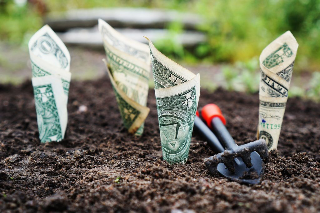 four rolled-up dollar bills seeming to grow out of dirt, with a miniature rake lying in between them