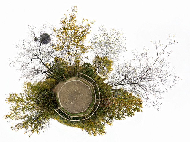 Collage of photos of trees around a central octagonal park space