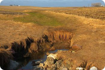 Um campo que foi recentemente colhido; uma porção afundou dando lugar à água subterrânea.