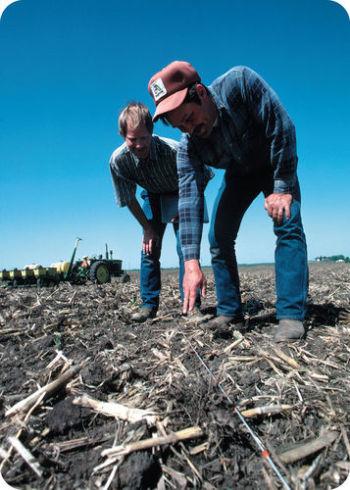 Figura 4. Um par de agricultores faz medições cuidadosas no campo.