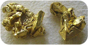 Figure 2. This mineral is shiny, very soft, heavy, and gold in color, and is actually gold.