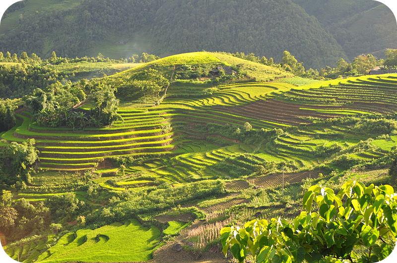 Uma colina esculpida em camadas distintas. Essas diferentes camadas servem como campos.