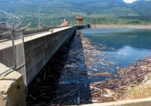 Revelstoke Dam and Revelstoke Lake