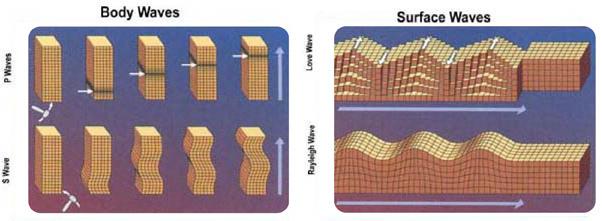 Fotos de ondas do corpo e ondas de superfície
