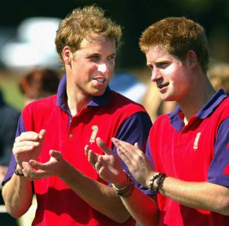 Princes William and Harry of the United Kingdom are shown talking while applauding and wearing brightly colored polo shirts.
