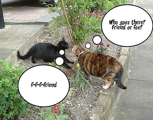 """Two cats in an urban setting. Tabby on right has thought bubble: """"Who goes there? Friend or foe?"""" Black cat on left, in submissive position, has thought bubble: """"f-f-f-friend."""""""