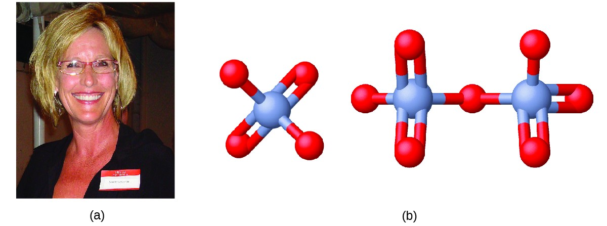 FigureA shows a photo of Erin Brockovich. FigureB shows a 3-D ball-and-stick model of chromate. Chromate has a chromium atom at its center that forms bonds with four oxygen atoms each. Two of the oxygen atoms form single bonds with the chromium atom while the other two form double bonds each. The structure of dichromate consists of two chromate ions that are bonded and share one of their oxygen atoms to which each chromate atom has a single bond.