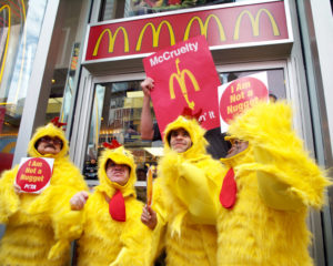 "Photo of four ""little people"" (members of a group called the Centerfold Stripper Midgets) wearing chicken suits, protesting against animal cruelty in front of a McDonald's. Two hold signs that read, ""I am not a nugget."""