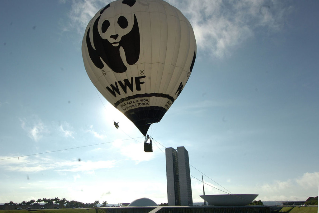 "World Wildlife Fund hot-air balloon with panda logo and ""WWF"" printed on side shown floating in the air in Brazil. City skyline is in the background."