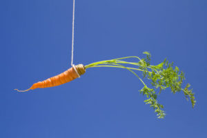 "Photo of a carrot hanging from a string against blue background. Photo caption is ""bait."""