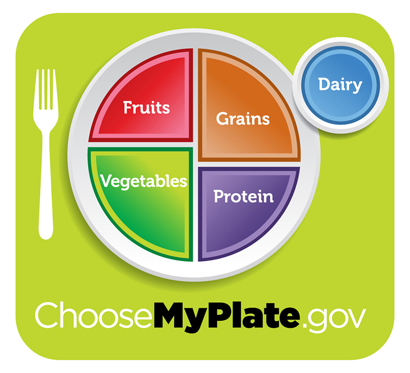 "Healthy diet logo shows a plate divided into four sections, labeled ""fruits"", ""vegetables"" ""grains,"" and ""protein"". The vegetables section is slightly larger than the other three. A circle to the side of the plate is labeled ""dairy"". Beneath the plate is the web address ""Choose My Plate dot gov""."