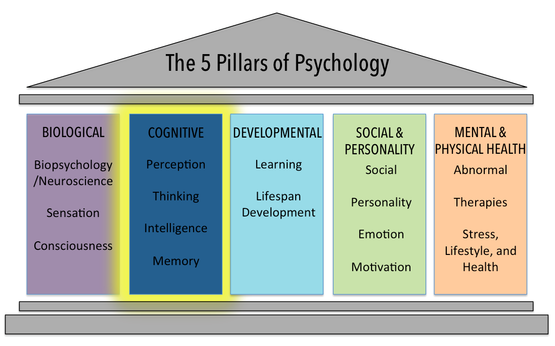 The five pillars of psychology: biological, cognitive, developmental, social and personality, and mental and physical health.