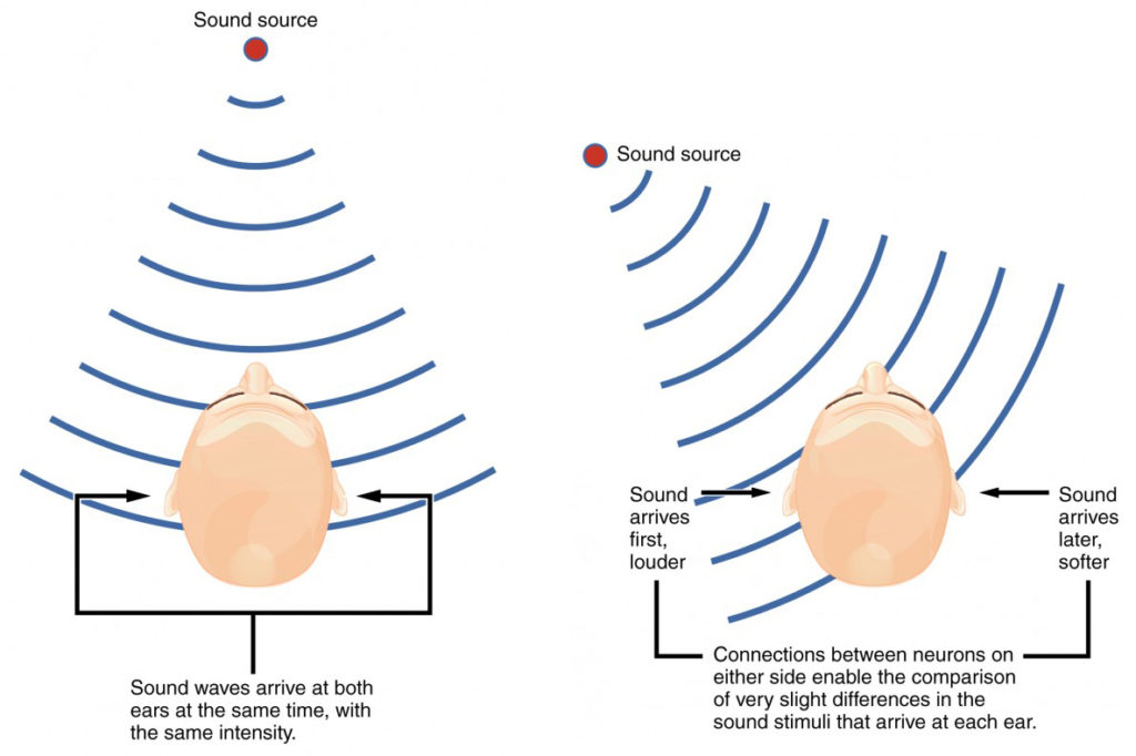 The top panel shows a person hearing a sound source that arrives in both his ears at the same time with the same intensity. The bottom panel shows a sound source that is not centered and arrives at different times with different intensities in each ear.