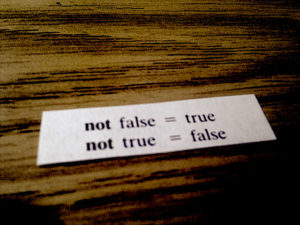 "Fortune cookie slip reading ""not false = true / not true = false"""